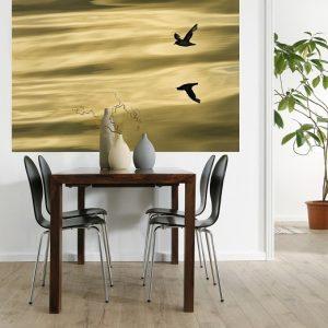 φωτοταπετσαρια τοιχου πουλια 1-604