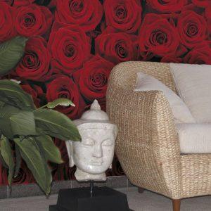 φωτοταπετσαρια τοιχου τριανταφυλλα 4-077
