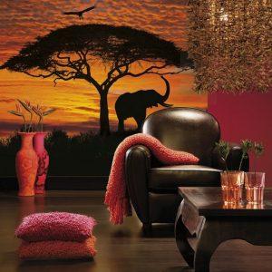 φωτοταπετσαρια τοιχου ηλιοβασιλεμα στην Αφρικη 4-501