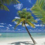 φωτοταπετσαρια τοιχου Μαλδιβες 4-883