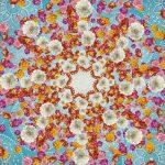 φωτοταπετσαρια τοιχου λουλουδια 4-969