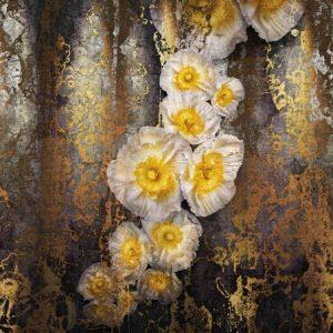 φωτοταπετσαρια τοιχου λουλουδια 8-963