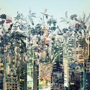 φωτοταπετσαρια τοιχου πολη με λουλουδια 8-979