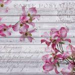 Φωτοταπετσαρία τοίχου vintage λουλούδια 3546