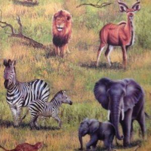 ταπετσαρια τοιχου ζουγκλα 264500