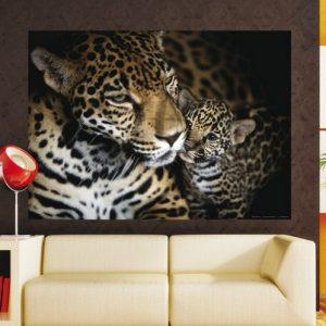 φωτοταπετσαρια τοιχου τιγρεις 1-0497
