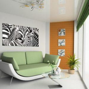 φωτοταπετσαρια τοιχου ζεβρες 1-0924