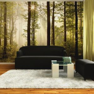 φωτοταπετσαρια τοιχου δασος 4-0181