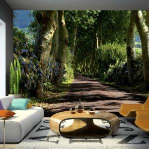 φωτοταπετσαρια τοιχου δασος 4-1303