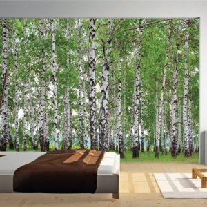 φωτοταπετσαρια τοιχου δασος 4-1304