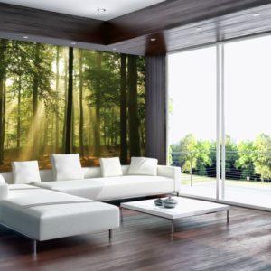 φωτοταπετσαρια τοιχου δασος 10331