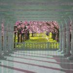 φωτοταπετσαρια τοιχου δασος 1364
