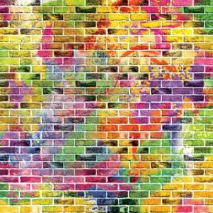 φωτοταπετσαρια χρωματιστα τουβλακια 3469