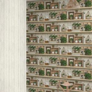 ταπετσαρια τοιχου κακτοι EP3802