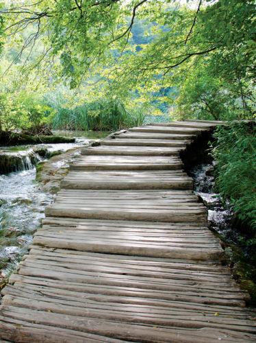 φωτοταπετσαρια τοιχου ξυλινη γεφυρα 1995A