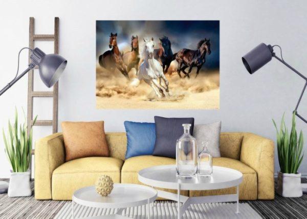 φωτοταπετσαρια τοιχου αλογα 1-2665