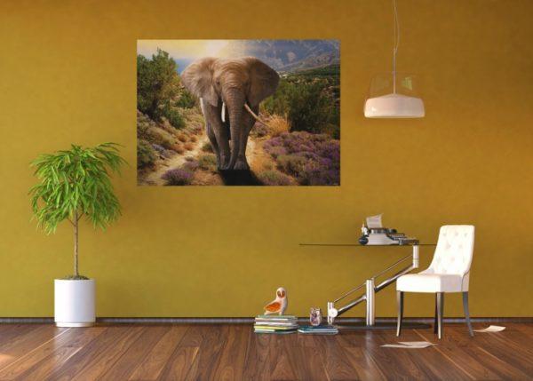 φωτοταπετσαρια τοιχου ελεφαντας 1-2671