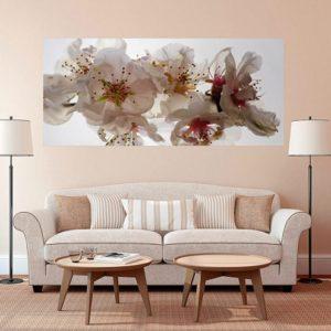φωτοταπετσαρια τοιχου λουλουδια 1-2742