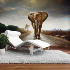 φωτοταπετσαρια τοιχου ελεφαντας 4-0438