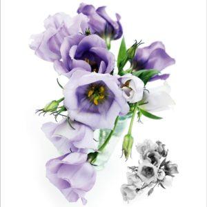αυτοκολλητο τοιχου λουλουδια 1029