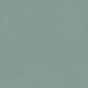 ταπετσαρια τοιχου μονοχρωμη 220241