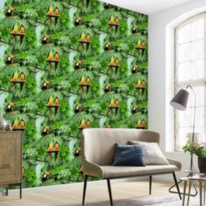 ταπετσαρια τοιχου ζουγκλα παπαγαλακια 584-04