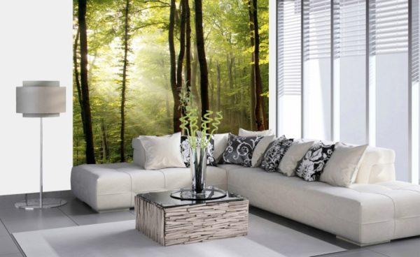 φωτοταπετσαρια τοιχου δασος MS0098
