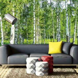 φωτοταπετσαρια τοιχου δασος MS0100