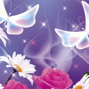 φωτοταπετσαρια τοιχου λουλουδια MS0113