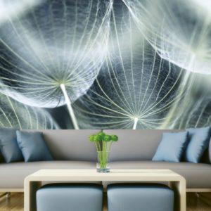 φωτοταπετσαρια τοιχου πικραλιδες MS0123