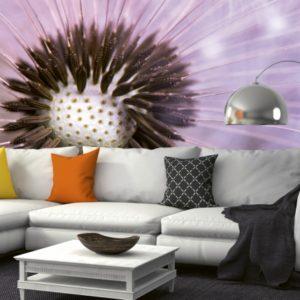 φωτοταπετσαρια τοιχου πικραλιδες MS0124