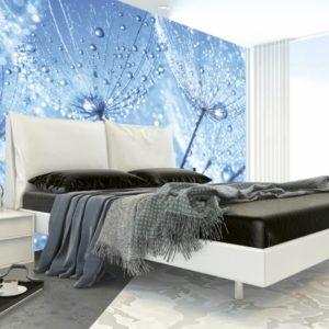 φωτοταπετσαρια τοιχου πικραλιδες MS0125