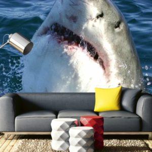 φωτοταπετσαρια τοιχου καρχαριας MS0217