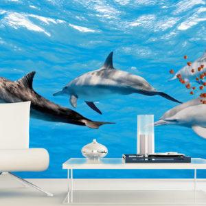 φωτοταπετσαρια τοιχου δελφινια MS0218